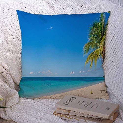 N\A Decorative Throw Pillow Cover Polyester Coconut Amazing Sandy Seascape Tropical Beach Relax Palm Tree Nature Aruba Parks Outdoor Paradise Cushion Case for Sofa Couch Living Room Bedroom