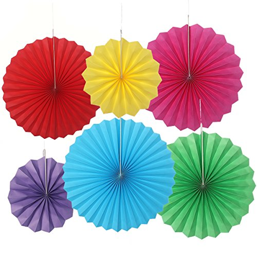 LUOEM 6pcs Paper Flowers Fans Hanging Tissue Craft for Birthday Wedding Baby Shower