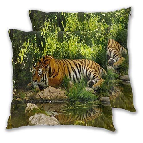 ALLMILL Juego de 2 Decorativo Funda de Cojín,Tigre descansando en el Bosque Junto al río,Funda de Almohada Cuadrado para Sofá Cama