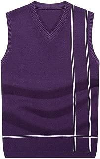 Men's Knit Sweater Men's Vest Warm Sweater Men's Jacket (Color : Purple, Size : L)