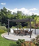 PURPLE LEAF Pergola en Aluminium avec Toit Ouvrant - 300 cm x 400 cm - Protection UV pour Terrasse, Pelouse, Jardin - Gris