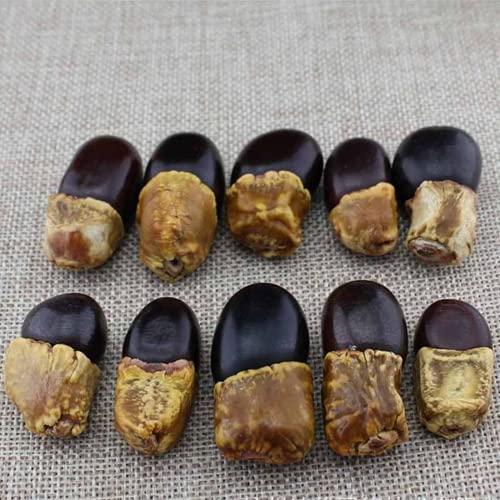 JONJUMP 10 unids/lote Natural Birmania Bodhi Perlas de madera Boddhism Ornamento Madera Espaciador Perlas DIY Colgante Hacer