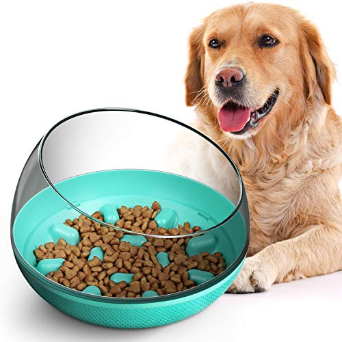 CLEEBOURG Slow Feeder Dog Bowl Fun Feeder No Chocking Slow Feeding Interactive Bloat Stop Dog Cat Food Bowls with Funny Pattern