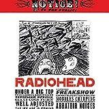 Radiohead - Angst und Datenschutz Poster Drucken (60,96 x