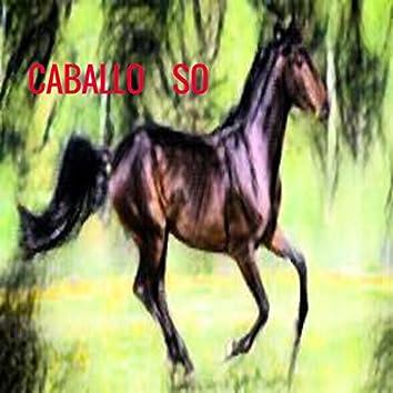Caballo So