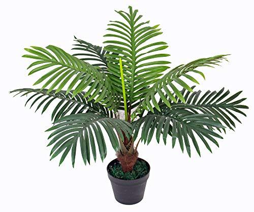 yanka-style Künstliche Palme mit Topf ca. 60 cm hoch Kunstpflanze künstliche Pflanze Kunstbaum Kunstpalme Baum Bäumchen Blume Kunstblume Deko Dekoration Geschenk (JWP231)