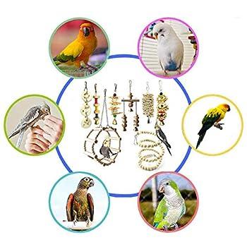Chikanb Lot de 8 Jouets à mâcher pour Oiseaux, Jouets pour perroquets, Jouet pour Cage pour perruches, calopsittes, Conures, inséparables, cacatoès, aras, pinsons, Petit Animal de compagn