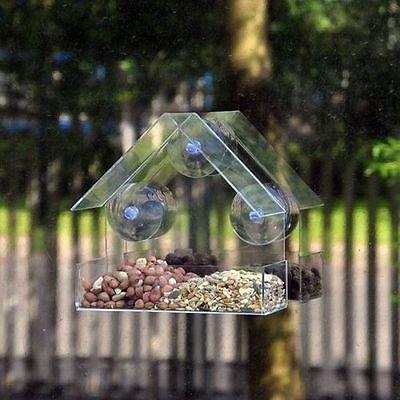 NEUF fenêtre en verre Mangeoire pour oiseaux table graines Cacahuète suspendu Transparent regarde un oiseau nourriture