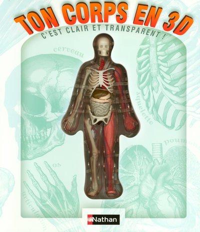 Ton corps en 3D : C'est clair et transparent !