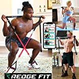 Redge Fit Complete Portable Home Gym Workout Set I Resistance Bands for Beginners to Elite Athletes I Collapsible Resistance Bar I Full Body Workouts from Home Gym or Park I Train Insane (6 Bands)