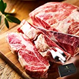 [IBERICO-YA] 【公式】お中元 和牛に負けない 高級 イベリコ豚 ステーキ肉 肩ロース スペイン産 計500g(5枚入) 化粧箱入り ごちそう 御中元 ギフト 冷凍 イベリコ屋 ※ ロースステーキ 500g