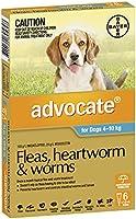 Advocate Flea, Heartworm and Worm Control for Medium Dogs, Aqua, 6 Pack