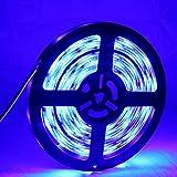 XWZH Epoxy Waterproof Blue LED Light Strip, 30 LED/m 5m