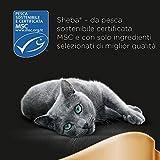 Zoom IMG-2 sheba cibo per gatto filetti