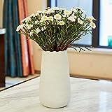 QTQHOME Weiß Keramikbeschichtung Vase,Moderne Verfeinert Dekoration Vase Handbuch Produktion Für Floral Blumen Pflanzung Hydrokultur Vase-c 38x14cm(15x6inch)