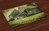 Ambesonne Country Place Mats Set of 4, Farmer Field Barn Warehouse Midwest American Style Antique Artwork Print, Washable Fabric Placemats for Dining Room Kitchen Table Decor, Pastel Green