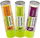 Lippenpflege-Set FRUCHT: Sanddorn, Cassis, Limette...