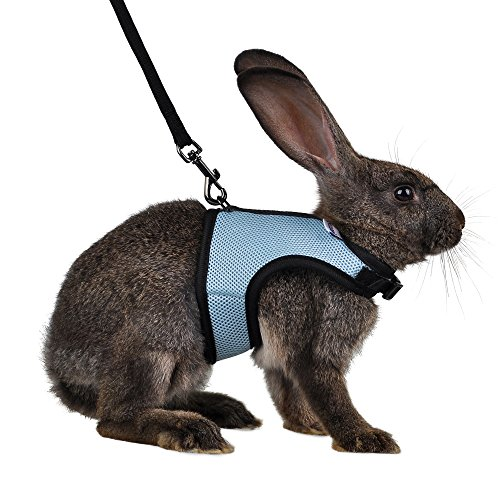 Niteangel Adjustable Soft Harness with Elastic Leash for Rabbits (M, Blue)