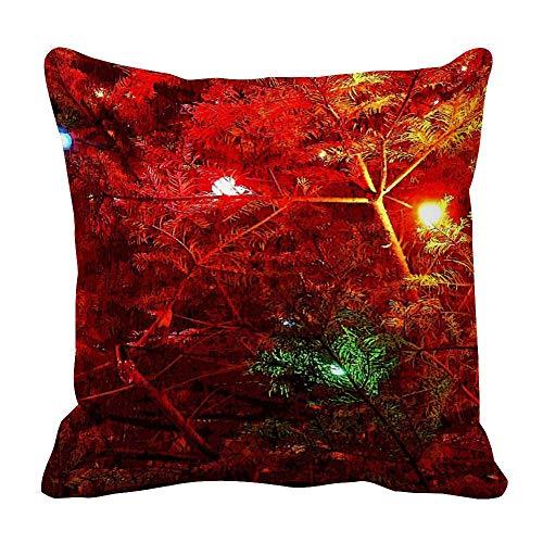 Perfecone Home Improvement - Funda de almohada de algodón con diseño de árbol doble, color blanco y negro, 1 paquete de 60 x 60 cm