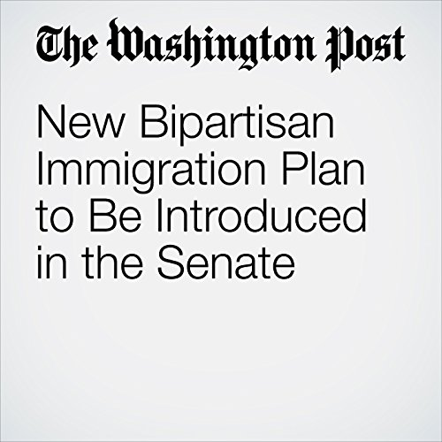 New Bipartisan Immigration Plan to Be Introduced in the Senate copertina