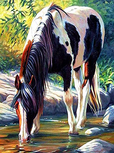 Sugamm DIY Diamond Painting Cheval Forêt Complet Kits, 5D Broderie Peinture Diamant Painting Animal Ruisseau Kit Complet De Croix Strass Art Craft pour Home Décoration Murale 30x40 cm