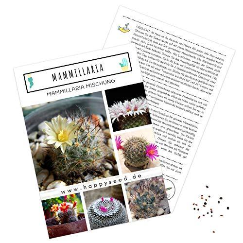 Außergewöhnliche Kakteen Samen mit hoher Keimrate - Sukkulenten Samen Set für deinen eigenen wunderschön blühenden Kaktus (1x Mammillaria)