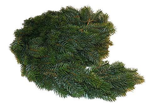 Hochwertige & Realistische Tannengirlande/Dekogirlande Weihnachten - Länge: 270cm - Indoor & Outdoor - Weihnachtsgirlande/Hängegirlande / Tischgirlande - Künstliche Tannen Girlande - Weihnachtsdeko