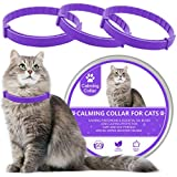 LUPUS 3 Pack Calming Collar for Cats, Cat Calming Collars, Natural Cat Pheromones Calming Collar, Adjustable, Waterproof and Safe, Reduce Anxiety Kitten Collar for Cats (Purple)