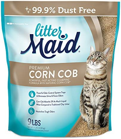 Top 10 Best arm and hammer clumping litter