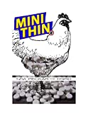 Mini Thins: Ghosties a Tyler Goodman Autobiography (English Edition)