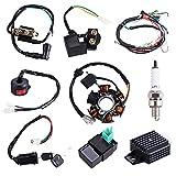 Complete Electrics Stator Coil CDI Quad Wiring Harness Solenoid Relay Spark Plug for 4 Wheelers Stroke ATV 50cc 70cc 90cc 110cc 125cc Pit Quad Dirt Buggy Bike Go Kart Parts by OTOHANS AUTOMOTIVE