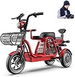 Bicicletta Elettrica, 3 ruote Bici elettrica 500W bicicletta elettrica for adulti 48V 11Ah 12 in Scooter elettrico con la serratura elettrica veloce Battery Charger con cappello sciarpa guanti for la