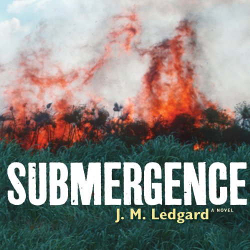 Submergence audiobook cover art