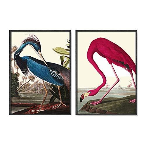 Audubon IlustracióN De La Lona Color De Rosa Salon De Decoracion Marco De La Azul Garza Aves Imprimir Poster Antiguo Vintage Animal Cuadros Inicio Pared Cuadro 40x50cmx2 No Aves