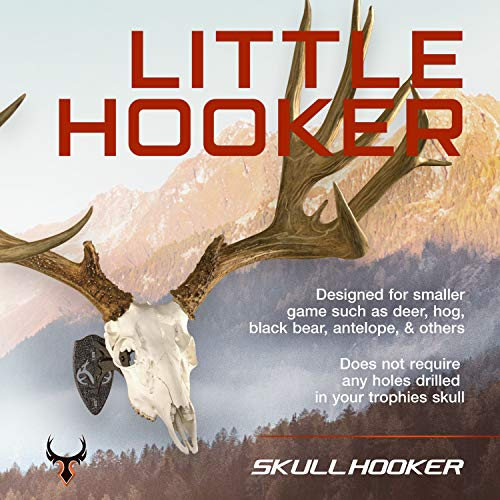Skull Hooker Little Hooker European Trophy Mount - Perfect Kit for Hanging and Mounting Taxidermy Deer Antlers and other Skulls for Display – Graphite Black