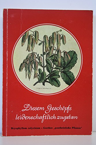 Diesem Geschöpfe leidenschaftlich zugetan : Bryophyllum calycinum - Goethes