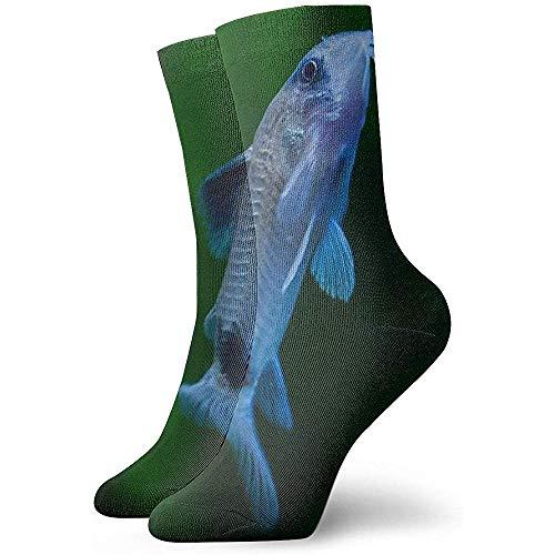 Gre Rry Mode-Neujahrsgeschenke Blue Catfish Crew Socks Sportliche atmungsaktive Socken Erwachsene Teens