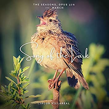 The Seasons, Op.37a: III. March: Song of the Lark