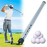 Perro Perdiguero De Pelota De Golf Portátil de Tubo de Aluminio portátil Pelota de Golf Shager Picker Hold Up 23 Bolas Escoger Recoger Las Bolas (Color : Silver, Size : One Size)