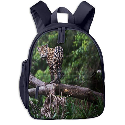 Mochilas Infantiles, Bolsa Mochila Niño Mochila Bebe Guarderia Mochila Escolar con Leopardo de Brasil para Niños De 3 A 6 Años De Edad