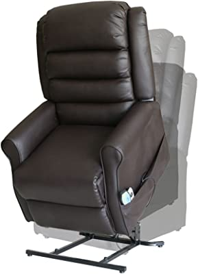 Amazon.com: Electric Power Lift Recliner Chair Dual TUV ...