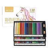Jacksking Sketching Pencil Set, Pencil Art Set 120 lápices Artista Pintor Dibujo Lápiz para Sketch School Art Supplies