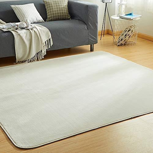 VK Living カーペット ラグ 洗える 滑り止め付 防ダニ 抗菌 防臭 200×250cm(約3畳) 12色選べる 1年中使えるタイプ 床暖房 ホットカーペット対応 ふわっと手触り 優しいフランネルラグ 絨毯 ムジ柄・アイボリー