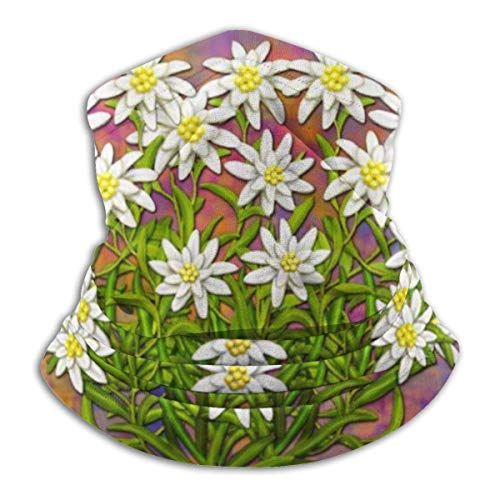 IZOU Swiss Edelweiss Flowers Neck Gaiter Face Mask,Multifunction for Man Women seasons Magic Scarf Bandana Balaclava