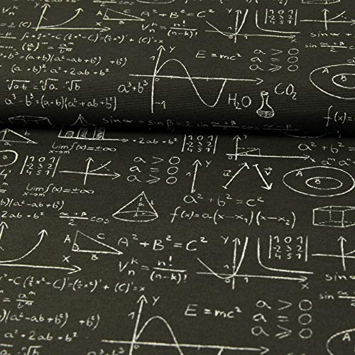 Stoffe Werning Dekostoff höhere Mathematik schwarz Dekorationen Canvasstoff Mathe - Preis Gilt für 0,5 Meter
