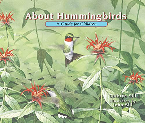 Hummingbirds Guide for Children