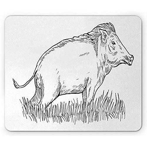 wildschwein skizze