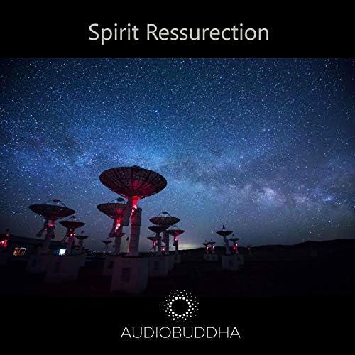 Audio Buddha