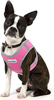 Best pink puppy harness Reviews