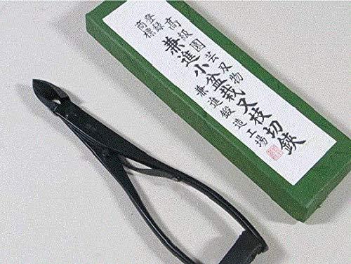 6 C-K coupante concave spéciales avec ressort pour bonsaï kaneshin